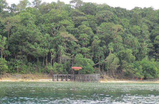 Pulau Kakaban - Tampak depan