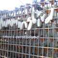 Hummingbird Eatery & Guesthouse
