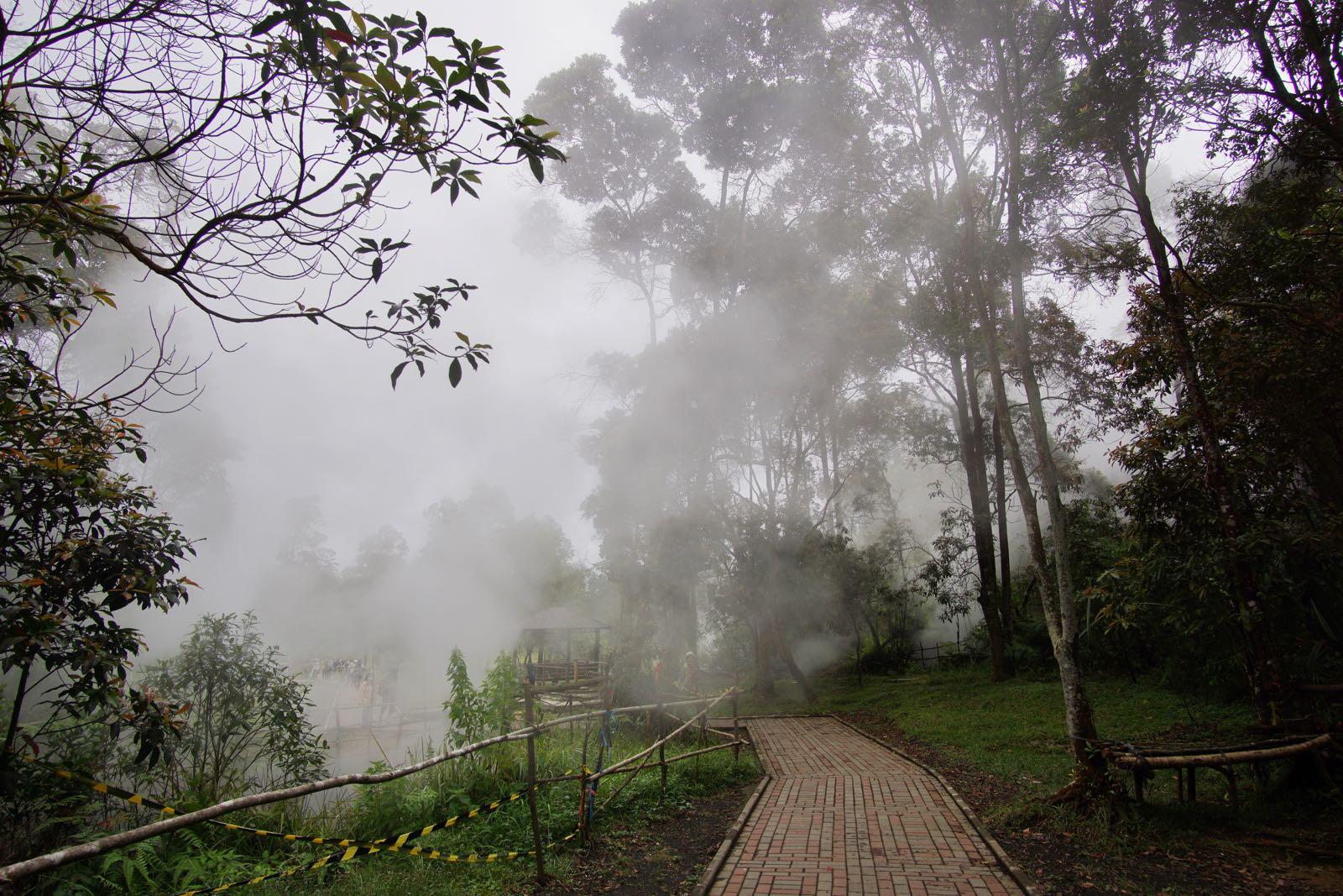 Kawah Kamojang, Garut hutan