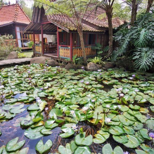 Jadul Adarapura Resort Spa Lembang Danau