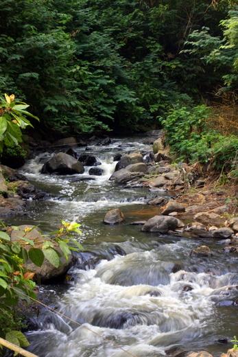 Sungai yang bersih di Bandung