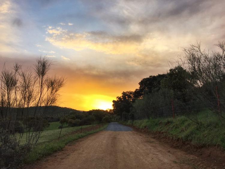 Camino Mozarabe day 10