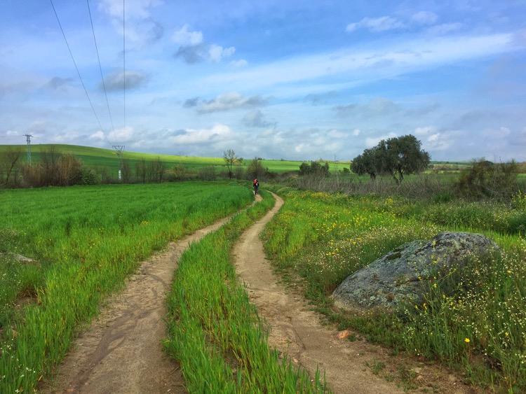 Camino Mozarabe day 12