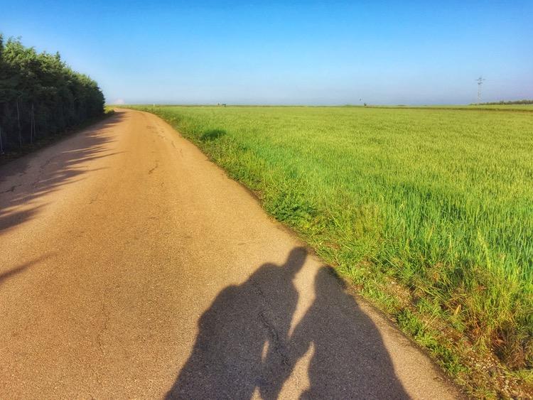 Camino Mozarabe day 14