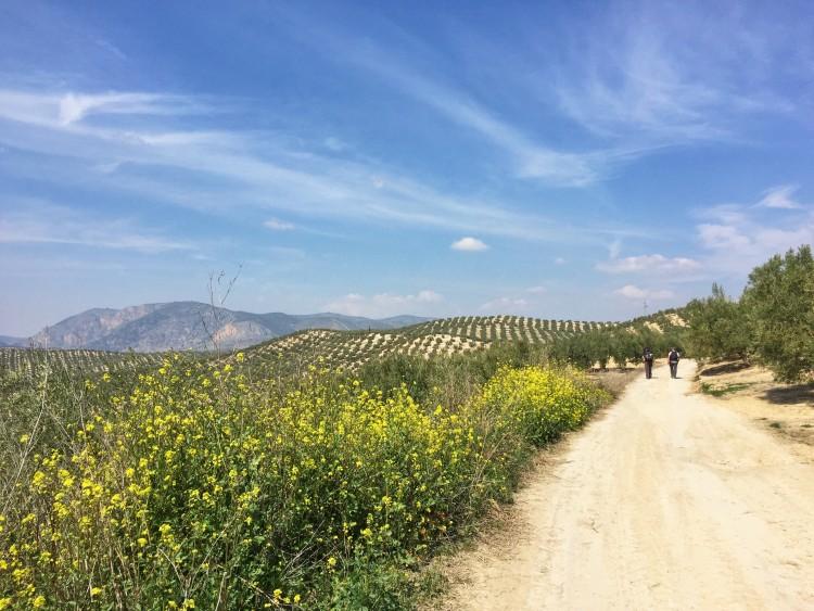 Camino Mozarabe day 1