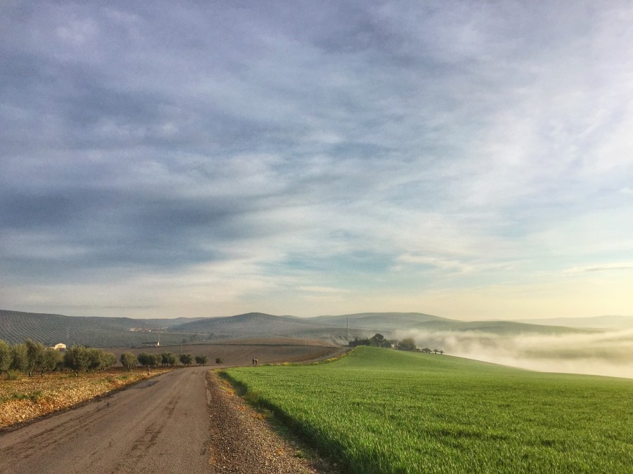 Pagi hari di Camino Mozarabe